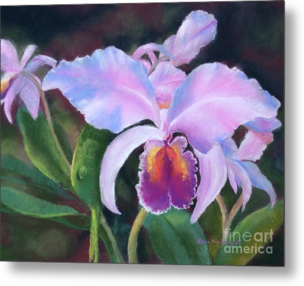 Exotic Pink Orchid Metal Print