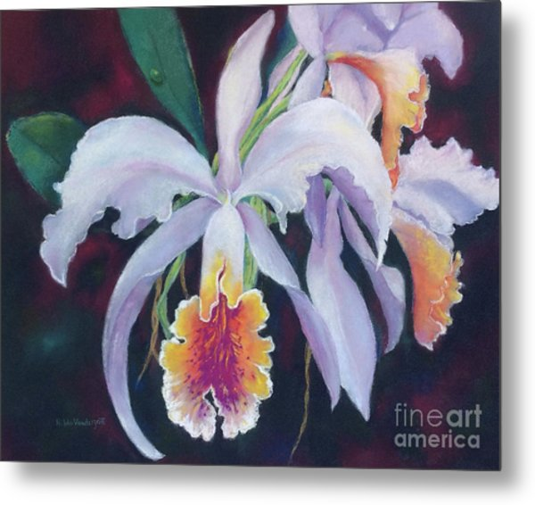 Exotic White Orchid Metal Print
