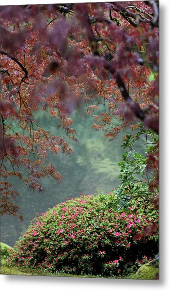 Metal Print featuring the photograph Exploring Beauty by Brandy Little