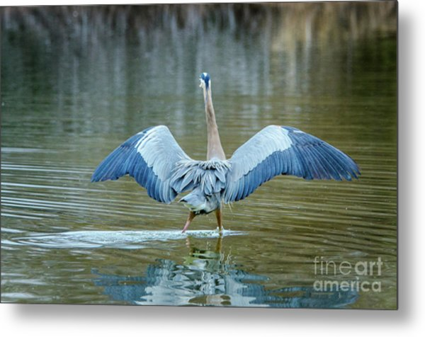 Expose Yourself To Nature Metal Print by Emily Bristor