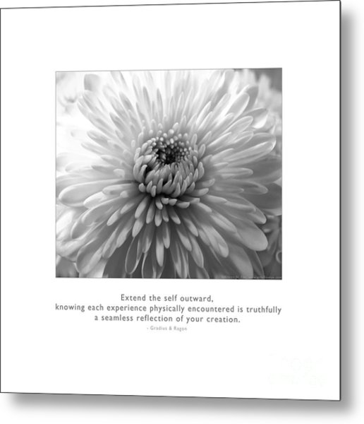 Metal Print featuring the photograph Extend The Self Outward by Kristen Fox