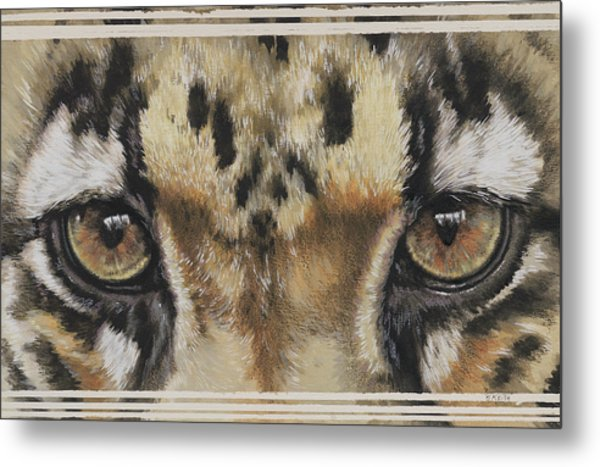 Clouded Leopard Gaze Metal Print