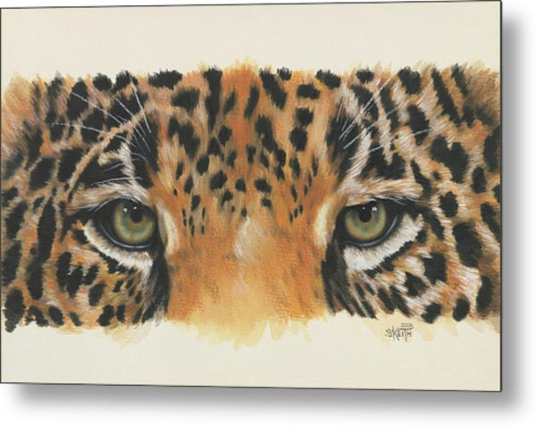 Jaguar Gaze Metal Print