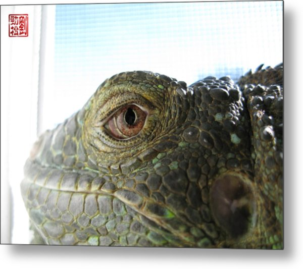 Eye Of The Dragon Metal Print