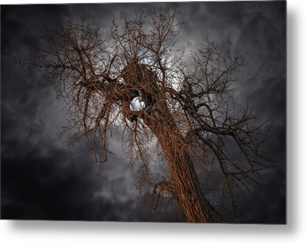 Eye Of The Storm Metal Print