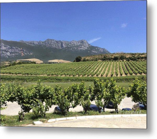 F 41 Ugarte Vineyards Rioja Metal Print by Norberto Torriente