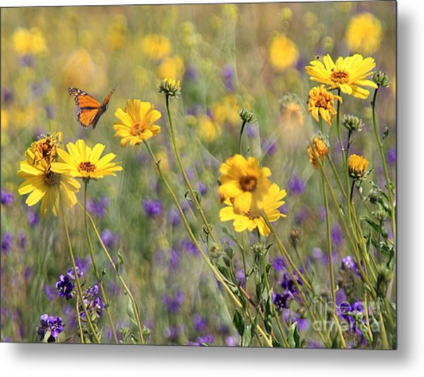 f5 Metal Print by Tom Griffithe