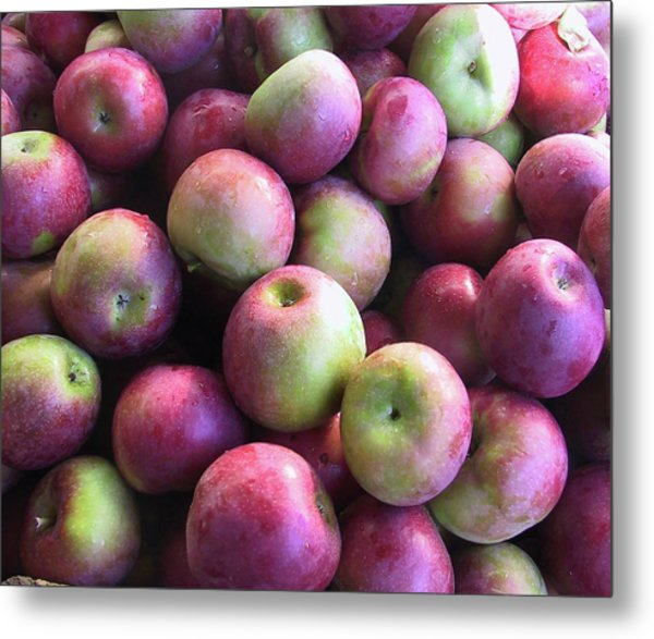 Fabulous Fall Fruits Metal Print