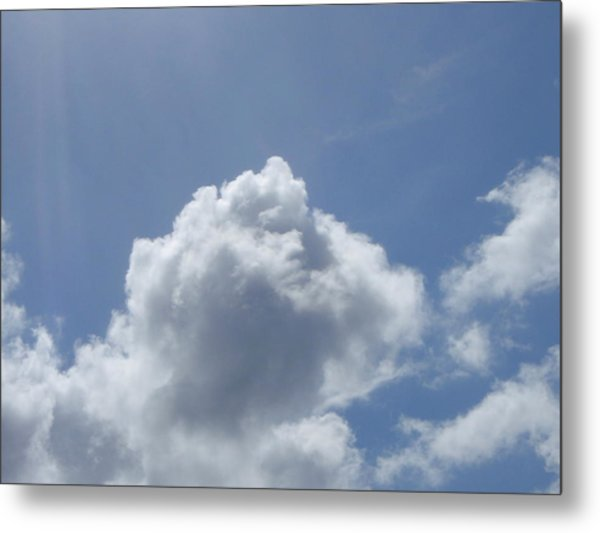Face Metal Print by Anthony Haight