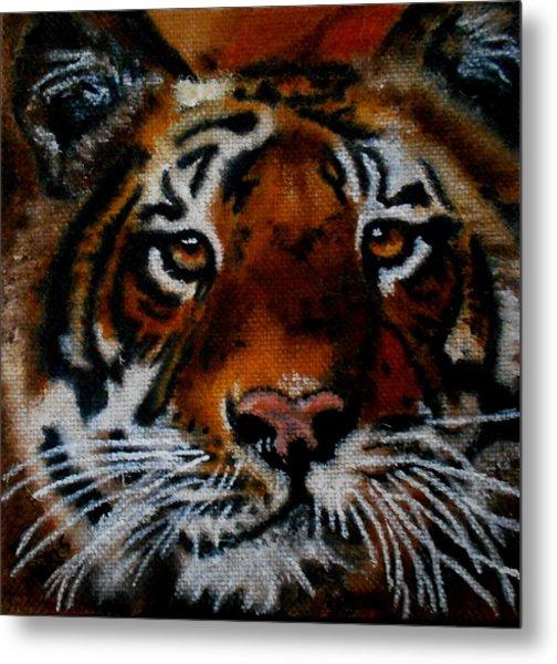 Face Of A Tiger Metal Print