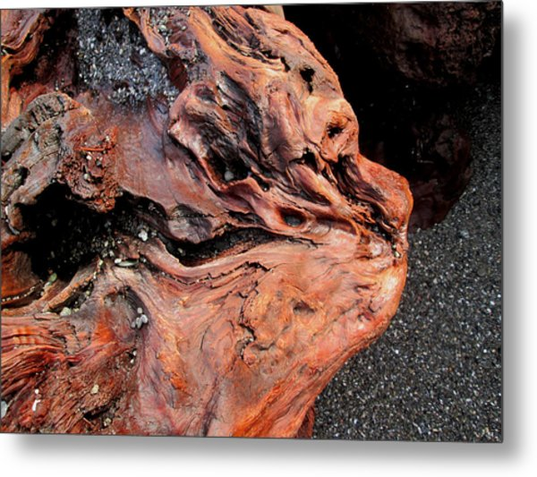 Faces In The Wood #5 - Lion King Metal Print
