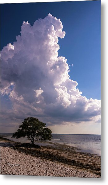 Facing The Storm Metal Print