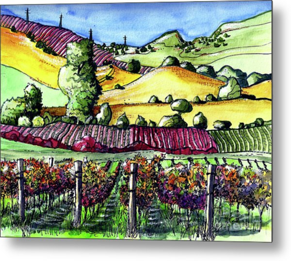 Fairfield Vineyards Metal Print