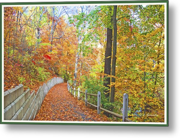 Fairmount Park Path In Autumn Philadelphia Pennsylvania Metal Print