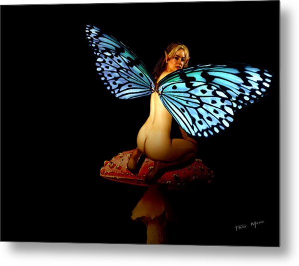 Fairy A Second Look Metal Print by Tray Mead