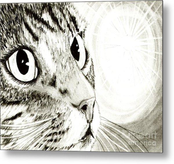Fairy Light Tabby Cat Drawing Metal Print