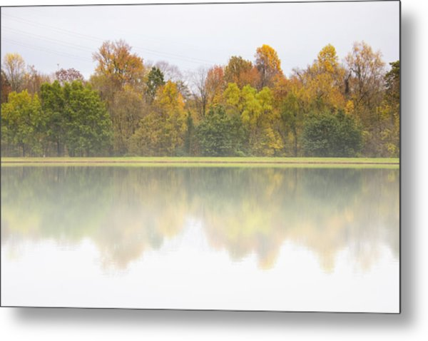 Fall And Fog Metal Print