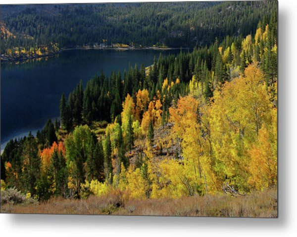 Fall At Rock Creek Lake Eastern Sierra Metal Print