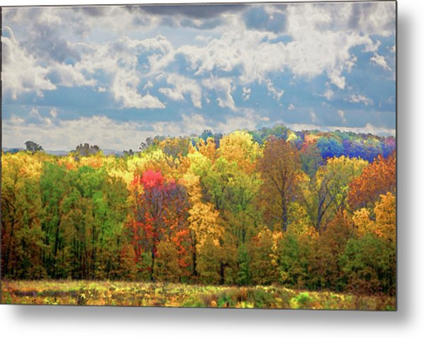 Metal Print featuring the photograph Fall At Shaw by David Coblitz