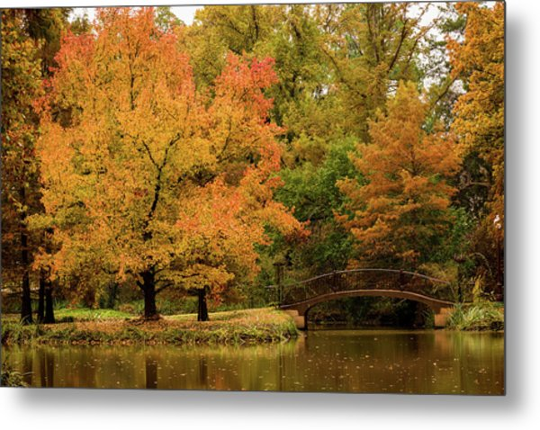 Fall At The Arboretum Metal Print