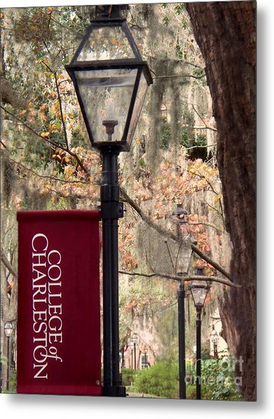 Fall At The College Of Charleston Metal Print by Melanie Snipes