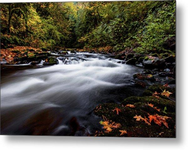 Fall Color At Cedar Creek Metal Print