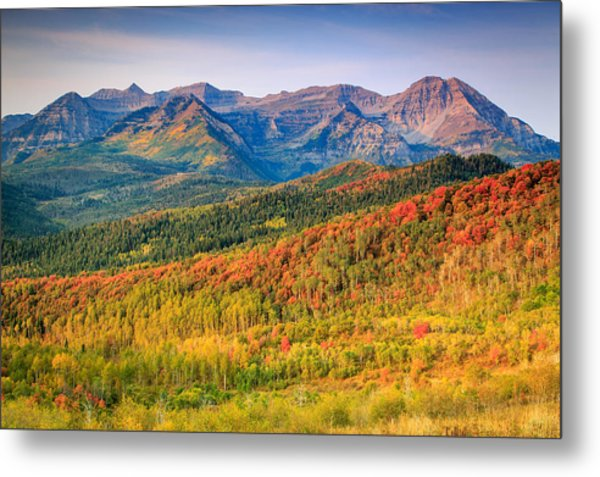 Fall Color On The East Slope Of Timpanogos. Metal Print