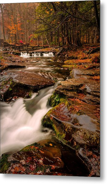 Fall Colors Around The Stream Metal Print