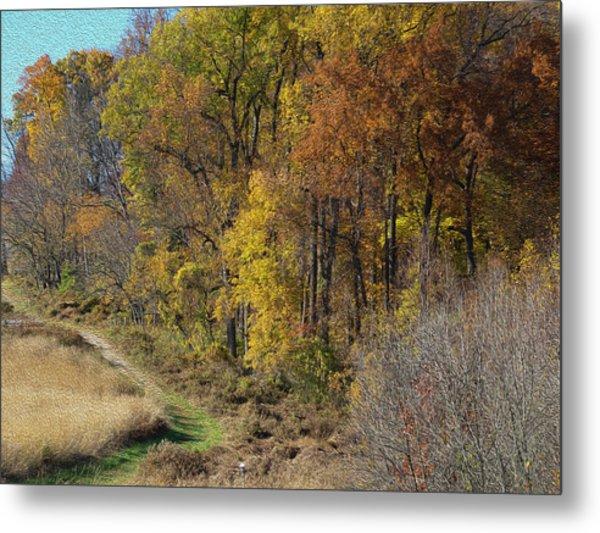 Fall Colors As Oil Metal Print