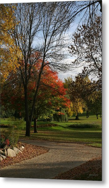 Fall Colors At Brooks Metal Print