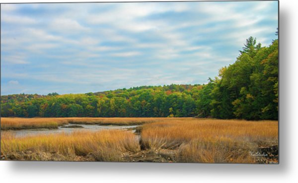 Fall Colors In Edgecomb Metal Print