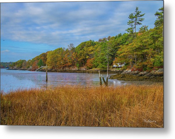 Fall Colors In Edgecomb Too Metal Print