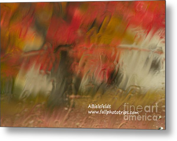 Fall Colors In The Rain Metal Print