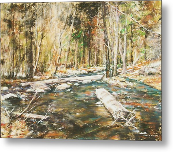 Fall Colors Metal Print by James Roybal