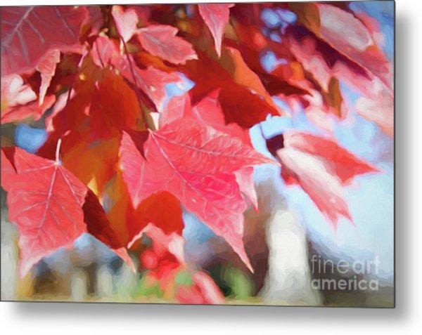 Fall Colors Oil Metal Print