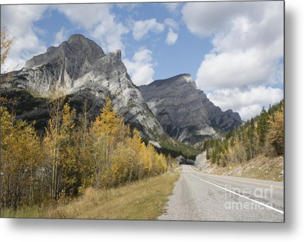 Fall Colours On Hwy #40 Kananaskis Metal Print