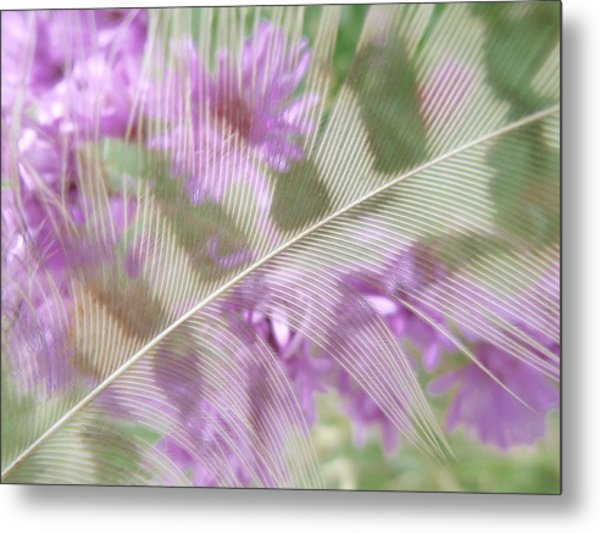 Fall Feather Metal Print
