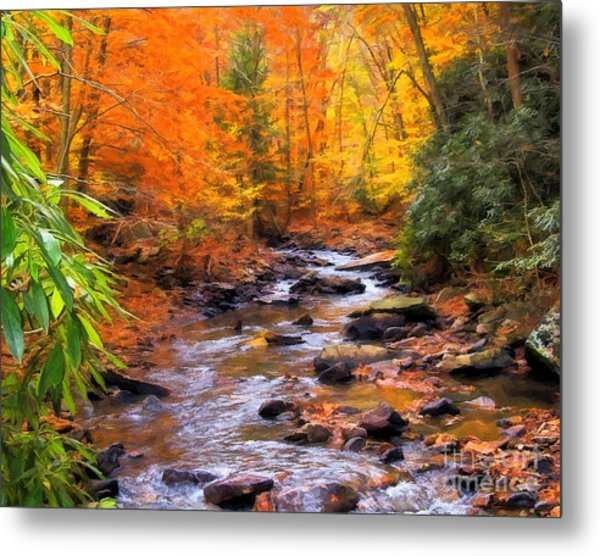 Fall Fire Metal Print by Randy Steele