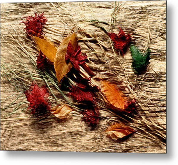 Fall Foliage Still Life Metal Print