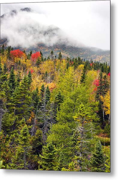 Fall In Baxter State Park Maine Metal Print by Brendan Reals