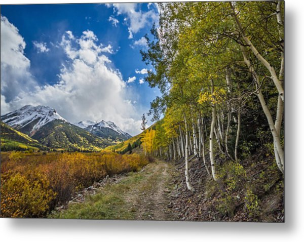 Fall In Colorado Metal Print