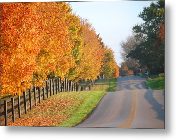 Fall In Horse Farm Country Metal Print