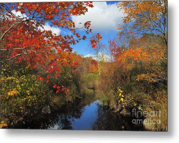 Fall In New England 2 Metal Print