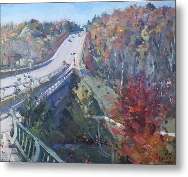 Fall In Silver Creek Georgetown  Metal Print