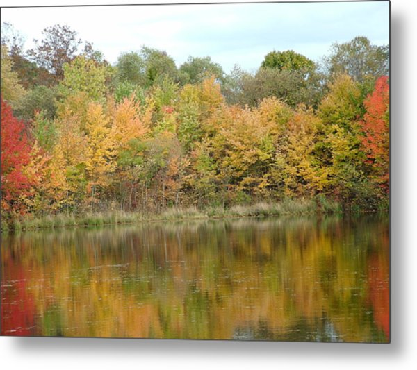 Fall In South Jersey Metal Print by D R TeesT