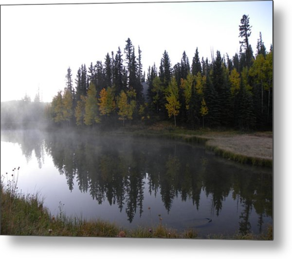 Kiddie Pond Fall Colors Divide Co Metal Print