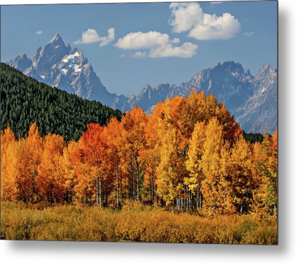 Fall In The Tetons Metal Print