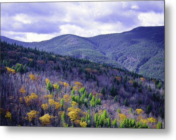 Fall In The White Mountains Metal Print