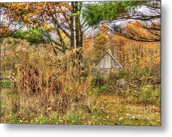 Fall In The Woods Metal Print