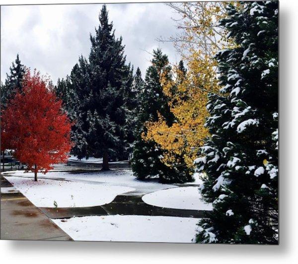 Fall Into Winter Metal Print